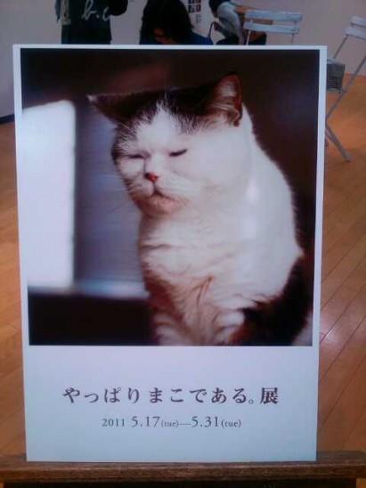 Photo0380.jpg