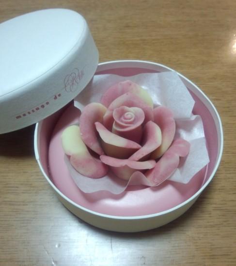 薔薇です!