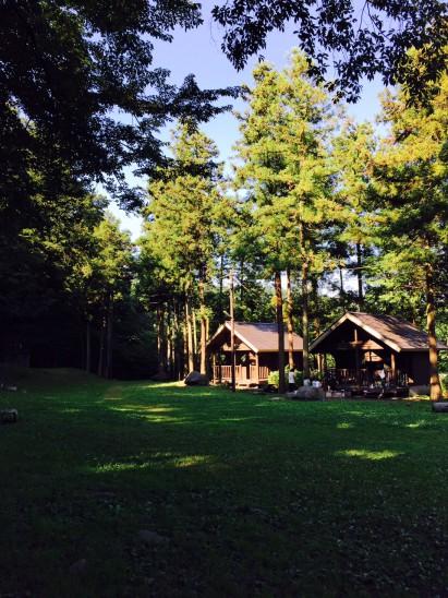 キャンプ場の朝は最高に気持ちいいです。